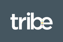 Tribe Strategic Accountants